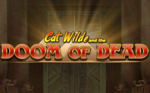 cat wild bwin